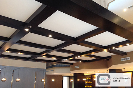 Acoustic ceiling 1