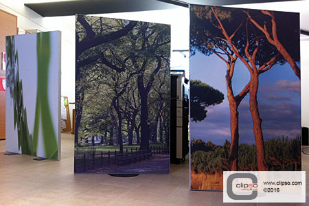 custom print partition wall