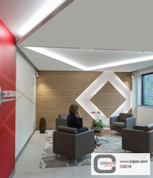 ceiling wall galleries commercial corporate