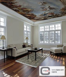 residential ceiling wall applications