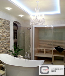 ceiling wall galleries residential bathroom