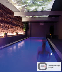ceiling wall galleries residential swimming pool