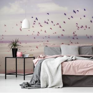 CLIPSO Deco Powdery Pink
